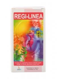 REGI-LINEA VIGENTE
