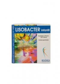 lisobacter_infantil